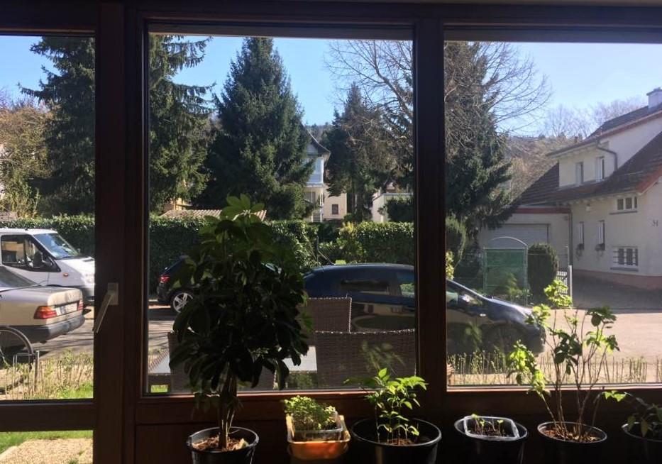 독일 하이델베르크에 있는 저자의 집 거실창에서는 현관이 바로 보인다