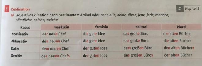 독일어의 복잡한 관사, 형용사 변형 체계를 문법책에서 설명하고 있다
