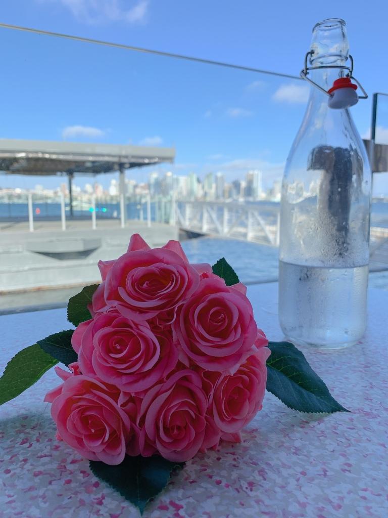 샌디에고 다운타운이 보이는 식당 코스테라에서 핑크 장미의 모습이다.